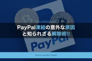 PayPal凍結の意外な原因と知られざる解除術とは?